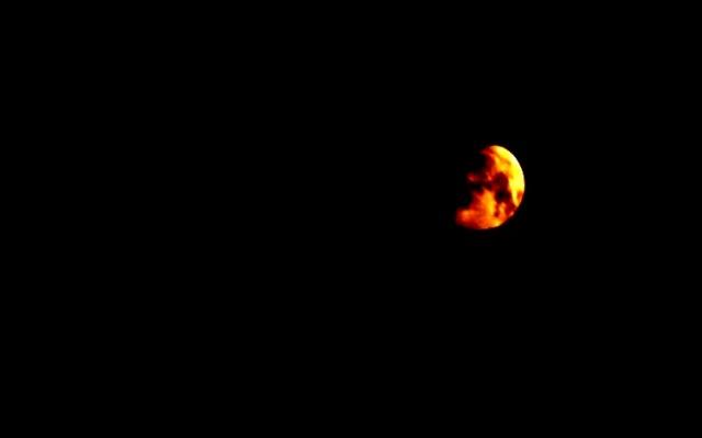 luna - trifiletti 2012