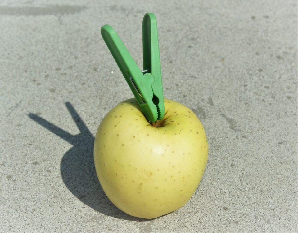 mela arte involontaria