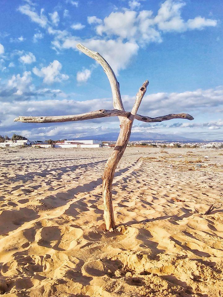 L'equilibrio del serpente. (Playa Catania)
