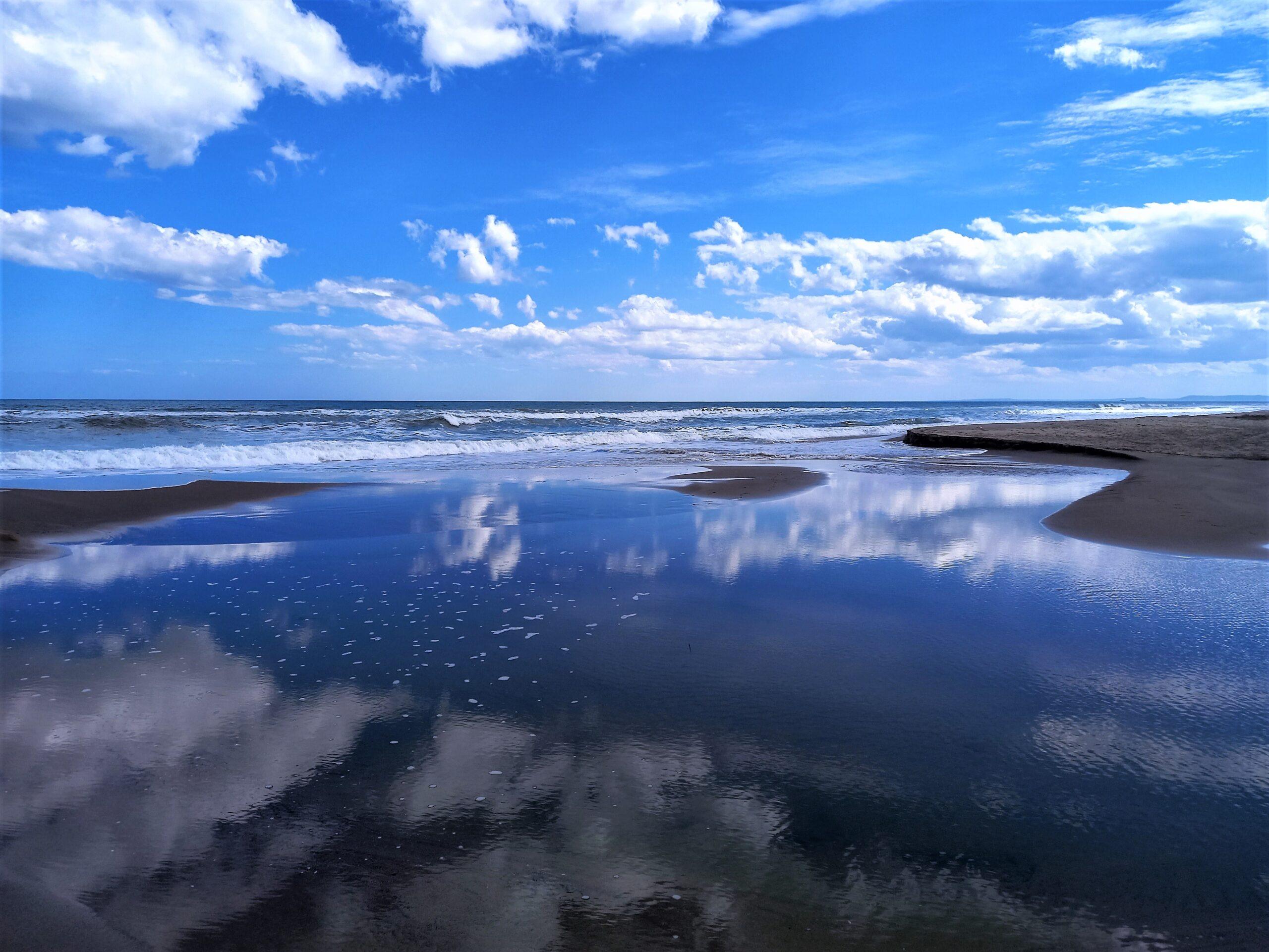 rispetta l'oceano